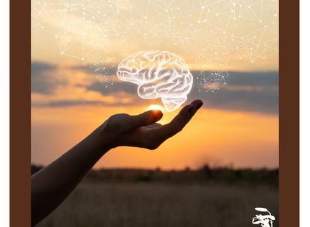 Psicobióticos para saúde neurológica e comportamental | Conheça Neuro Psicare