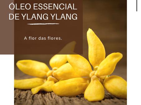 Dica Saudável | Óleo Essencial de Ylang Ylang