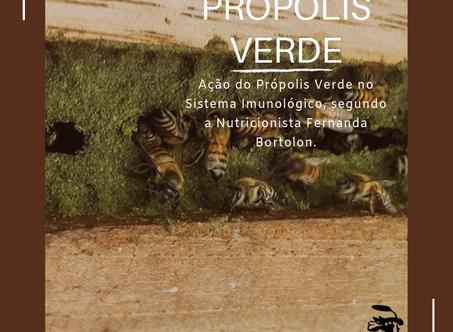 Ação do Própolis Verde no Sistema Imunológico | Nutricionista Fernanda S. Bortolon