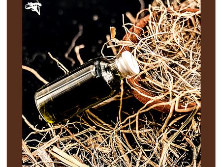 Dica Saudável | Vetiver: o óleo essencial do enraizamento.