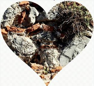 HEART WALLS