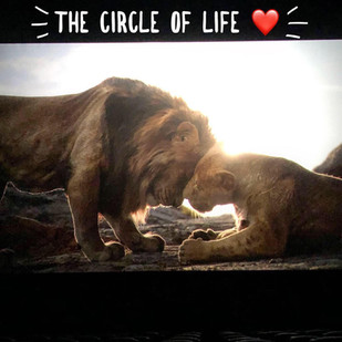 The Circle of Life: Connecting Conservation to Humanity