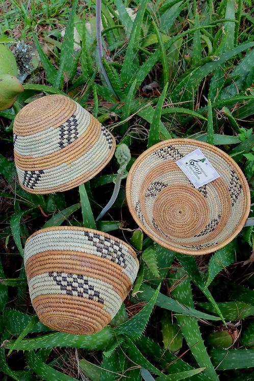 Natural Tan & seafoam green bowl with black stripe accents