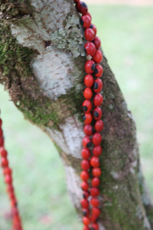 flame tree seed necklace - all red