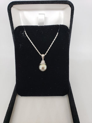 Tahitian Pearl 9-9.5mm in 14Kt White Gold Mounting