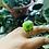 Thumbnail: Green Cats Eye