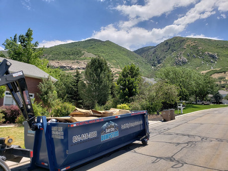 Surprising Benefits of Dumpster Rentals
