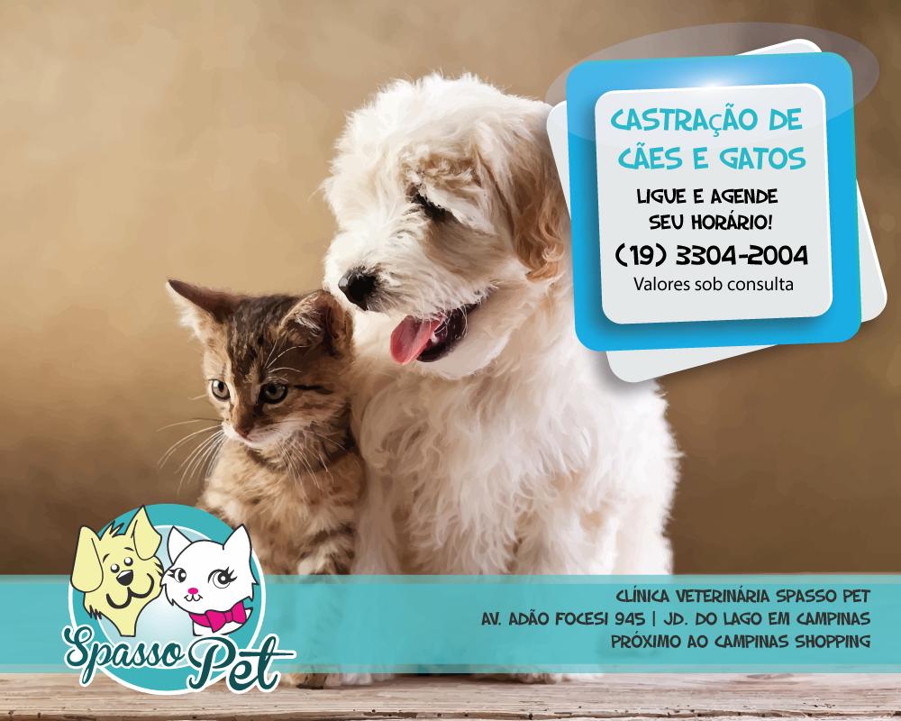 Spasso Pet Clínica Veterinária