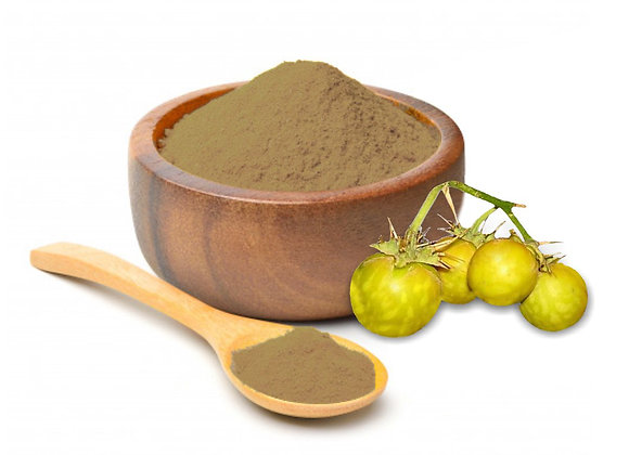 Kantakari (Solanum Xanthocarpum) Extract Tannins 5% by Gravimetry