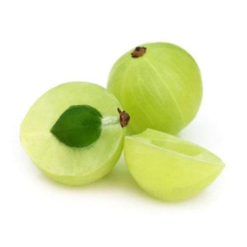 Amla (Emblica officinalis) Extract Tannins 40% by UV