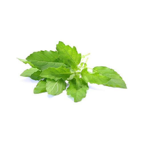 Tulsi (Ocimum sanctum) Extract Tannins 5% by Gravimetry