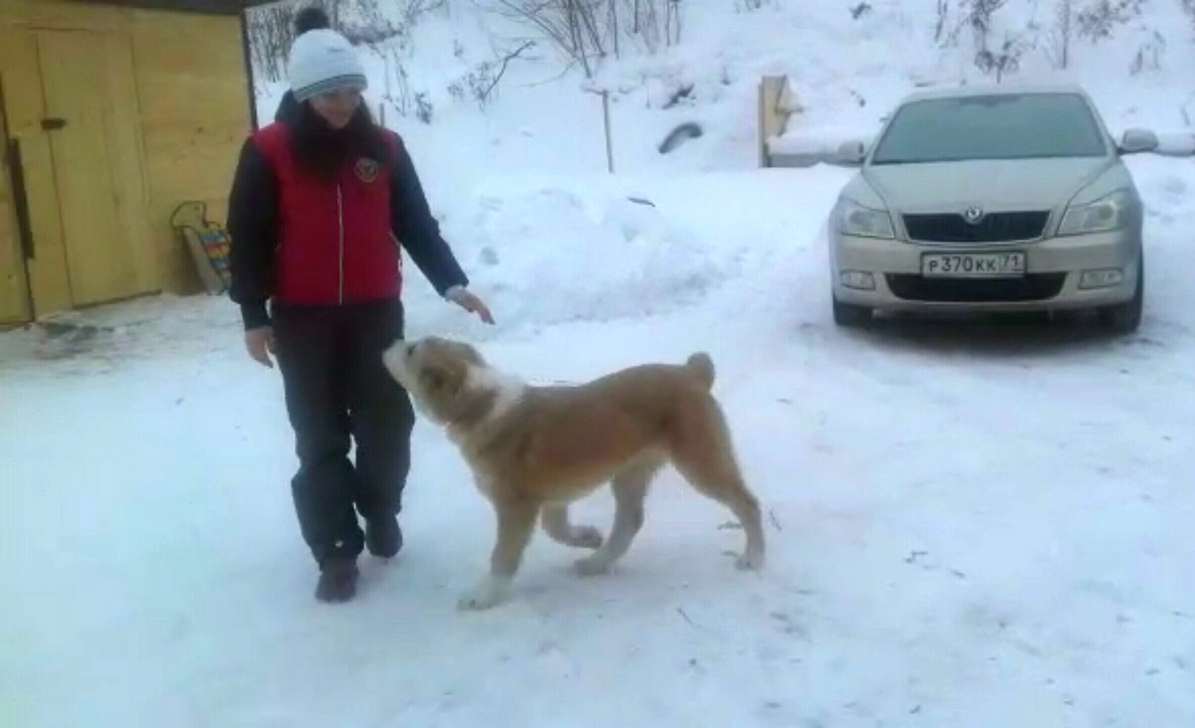 СУРДАН КАРАШ ДЖАННА