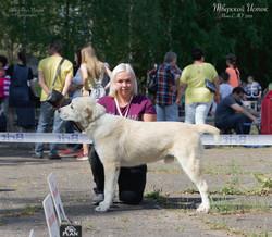 СУРДАН КАРАШ КРАЙД