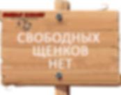board_04.jpg