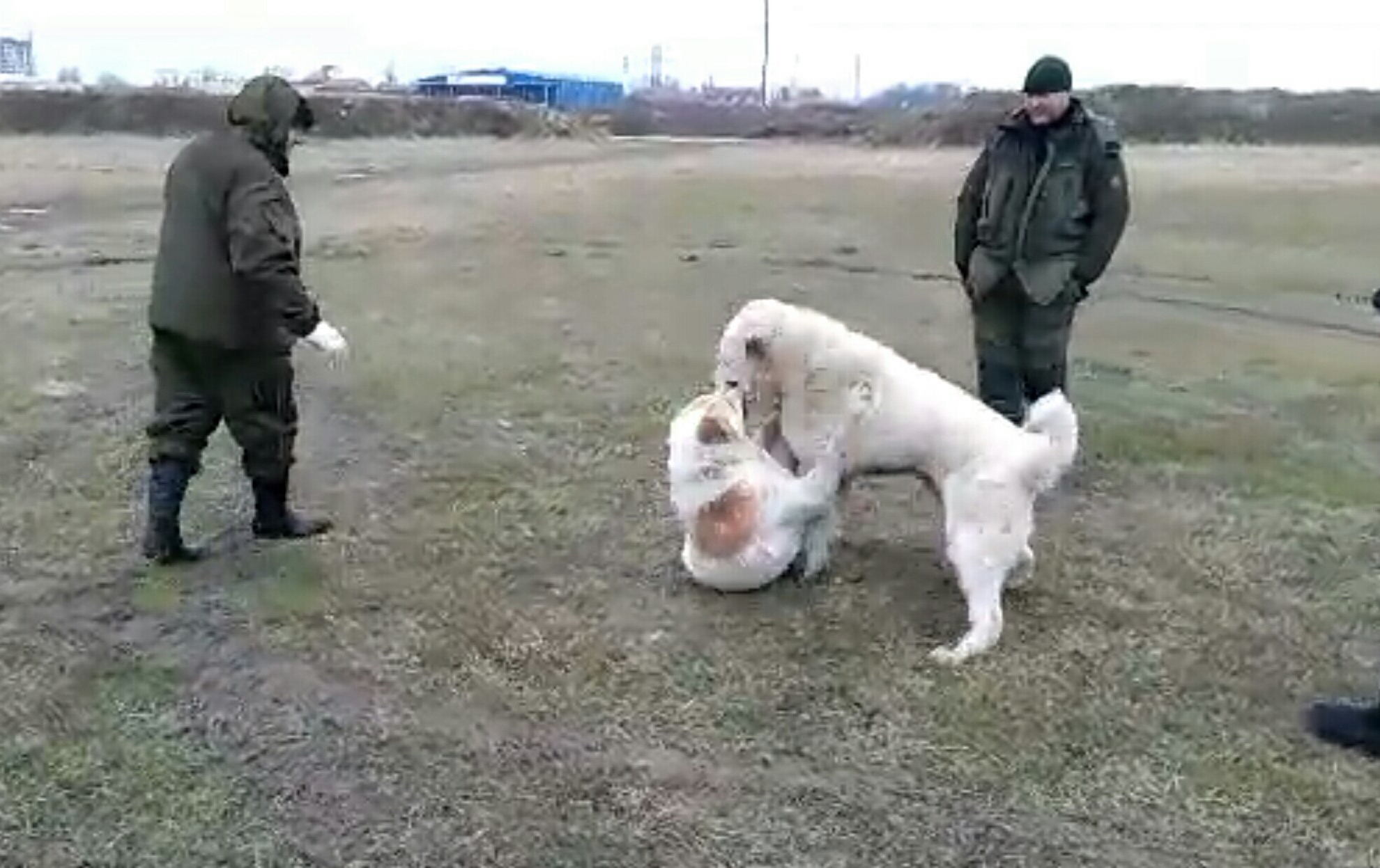 СУРДАН КАРАШ ГАПЛАН