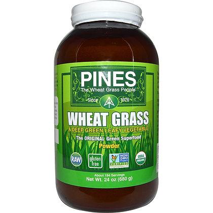 Pines Wheat Grass