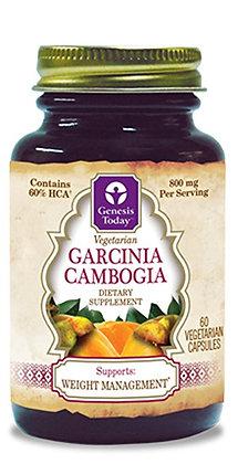 Genesis Today Garcinia Cambogia
