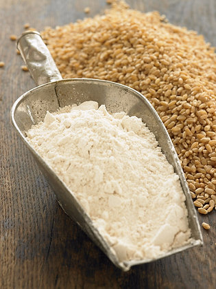 Hard Spring Whole Wheat Flour