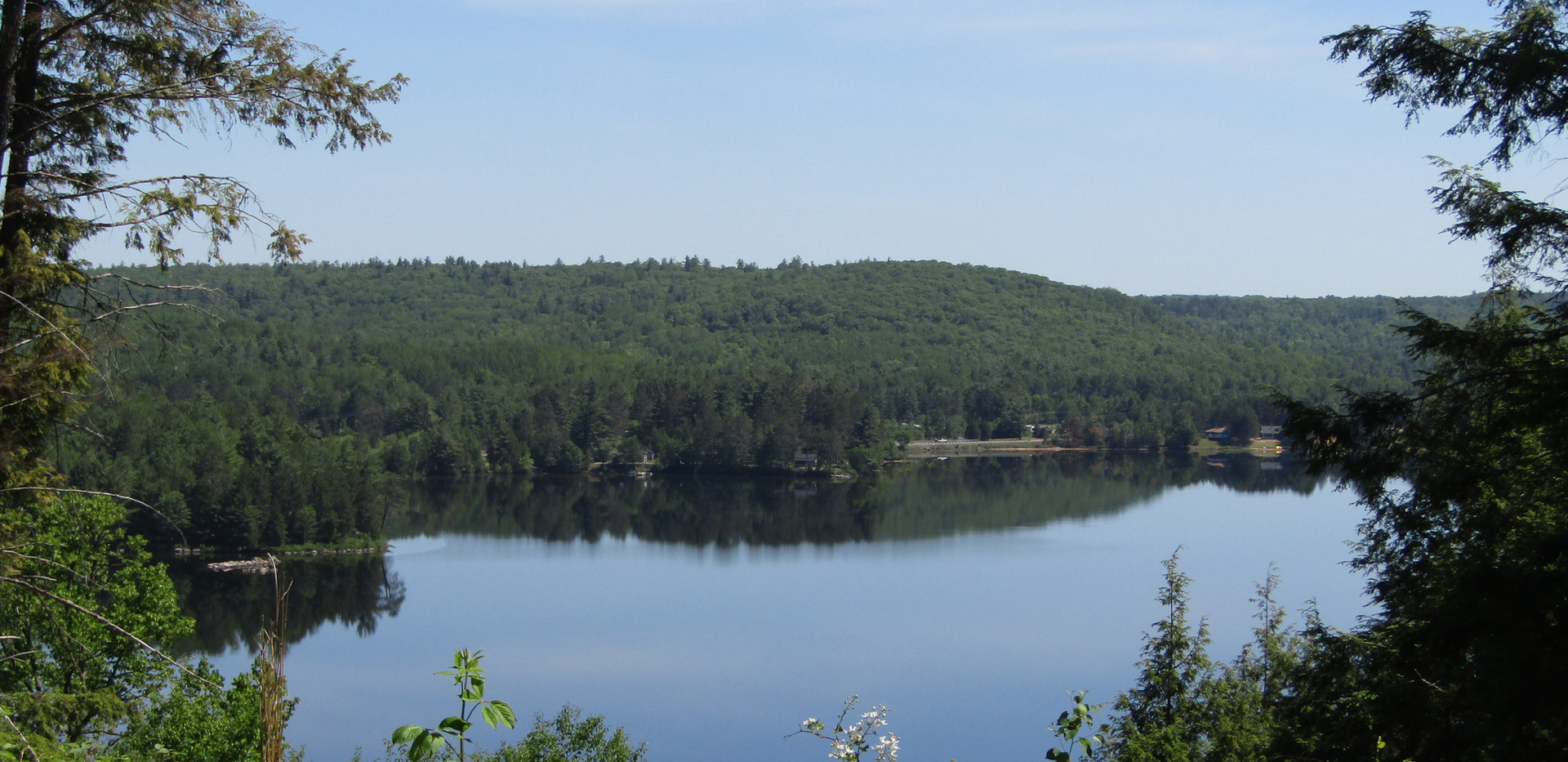 Trout Lake From Algonquin Heights