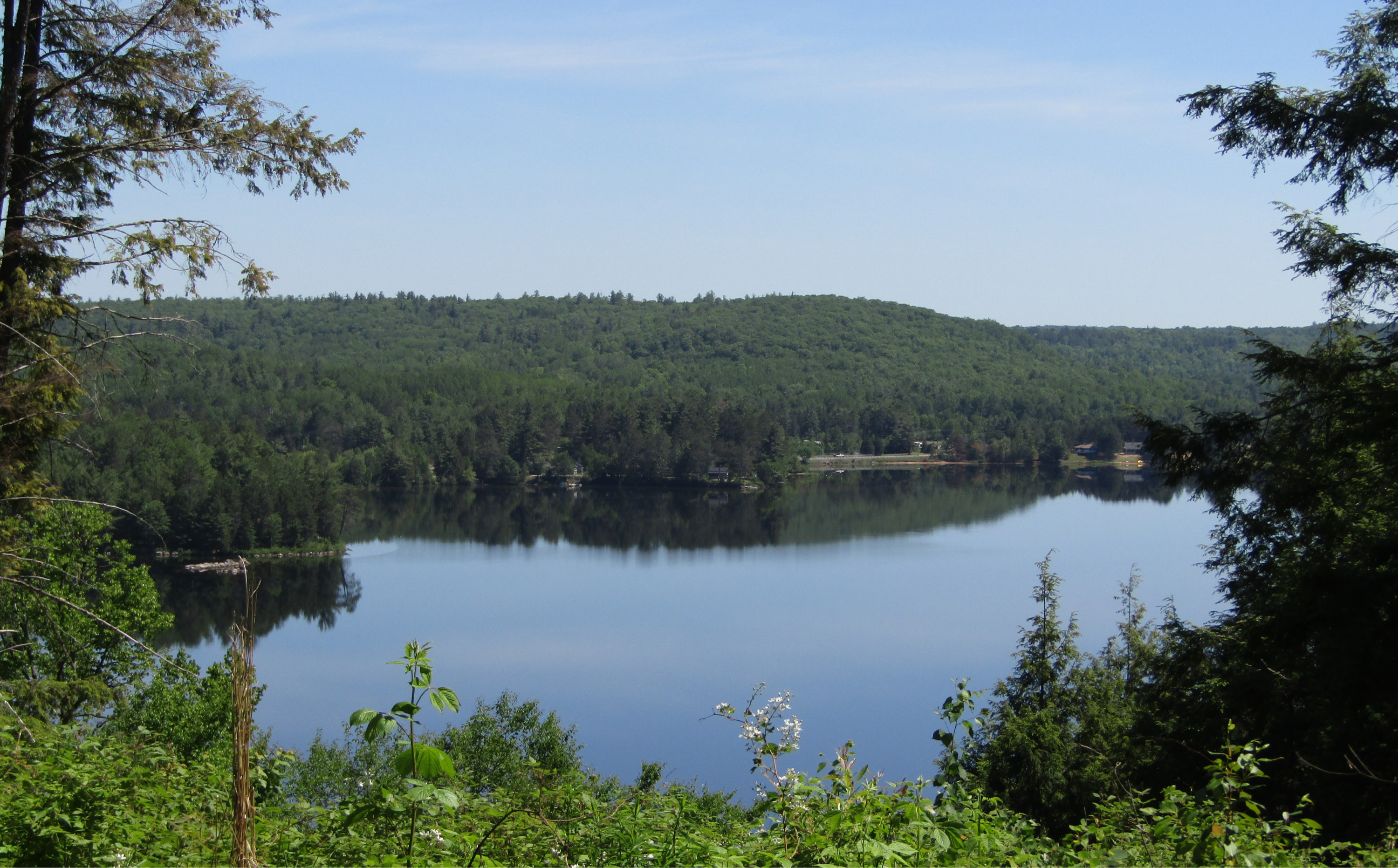View of Trout Lake from Algonquin Heights buildsite