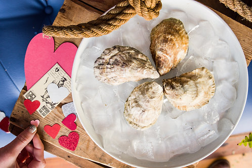 Saturday, February 13th at 8:00 ~ Fancy Dinner with Maine Oyster Company