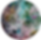SER_logo_1.png
