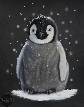 Bébé Pingouin