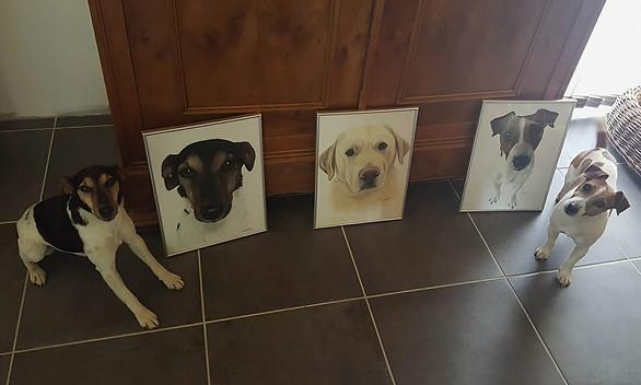 Cassy, Mat et Durt