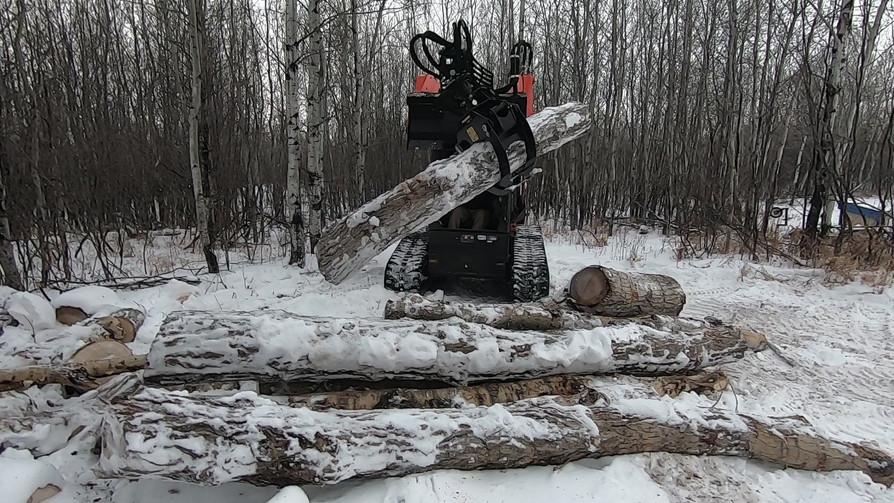 Rotating log grapple skid steer