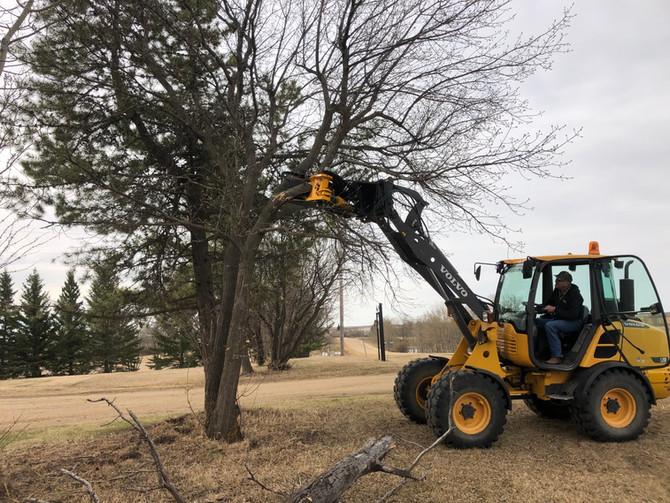 loader tree shear