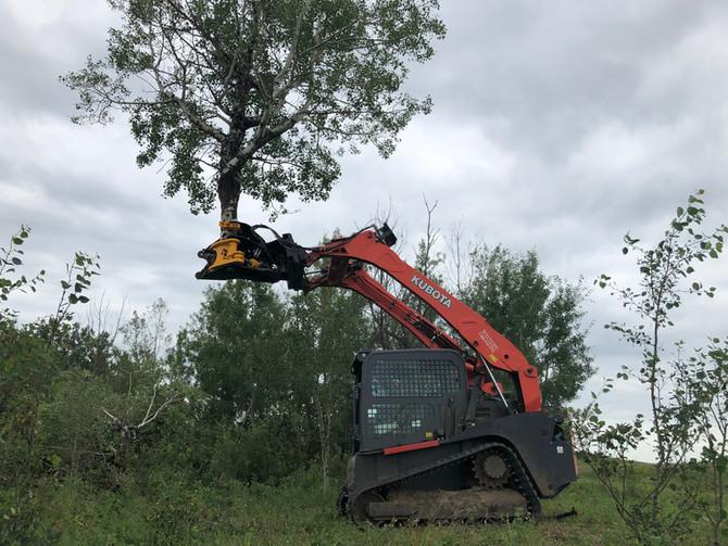 bobcat tree shear
