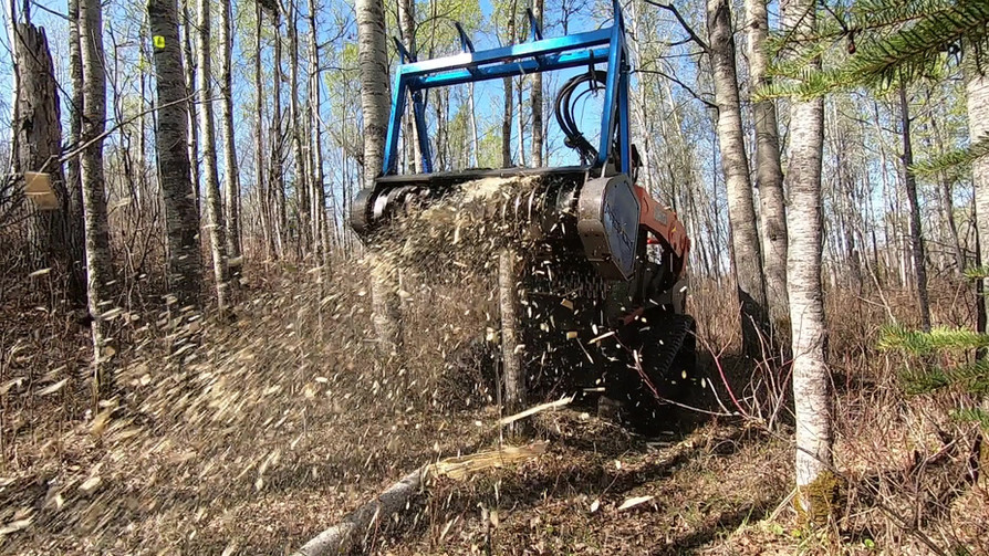 Mulcher tree grind.jpg