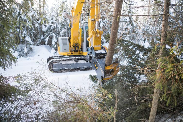 tree shear on excavator