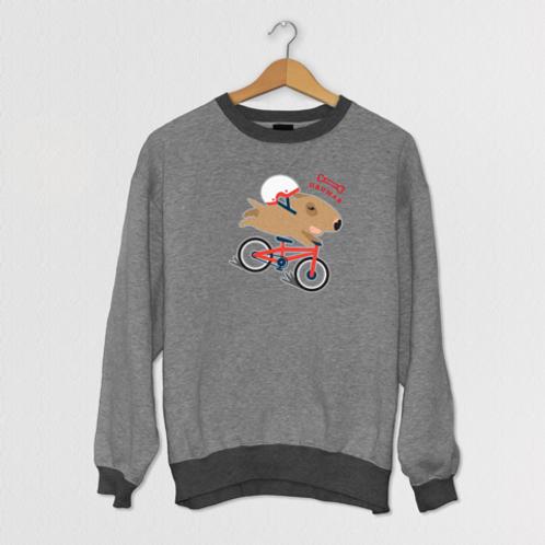 Стич  Велосипедист