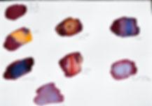 test couleurs campeche.jpg