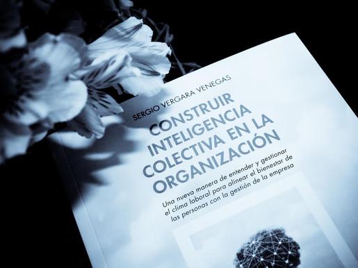 Construir inteligencia colectiva en la organización. Sergio Vergara