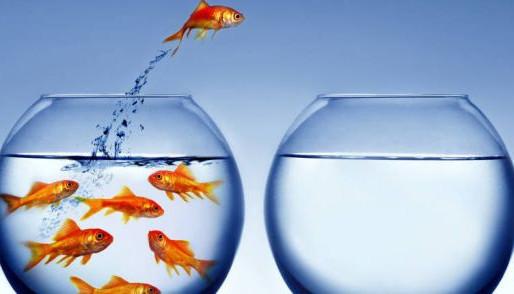Estilos de liderazgo transformacional