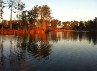 Accretion & Reliction: What To Know When Your Land Is Bounded By Water