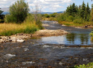 Enhancing the True Value of Land – Water Resources