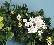 EverLast Greenery Silk flowers