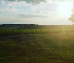 Achrimere sunset
