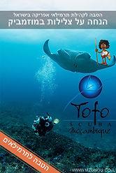 tofo2.jpg