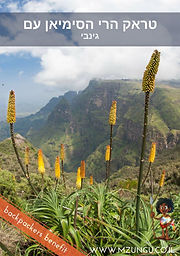 Simien Mountains Ginbie.jpg