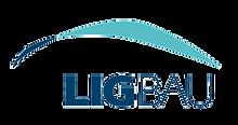 ligbau_edited.png