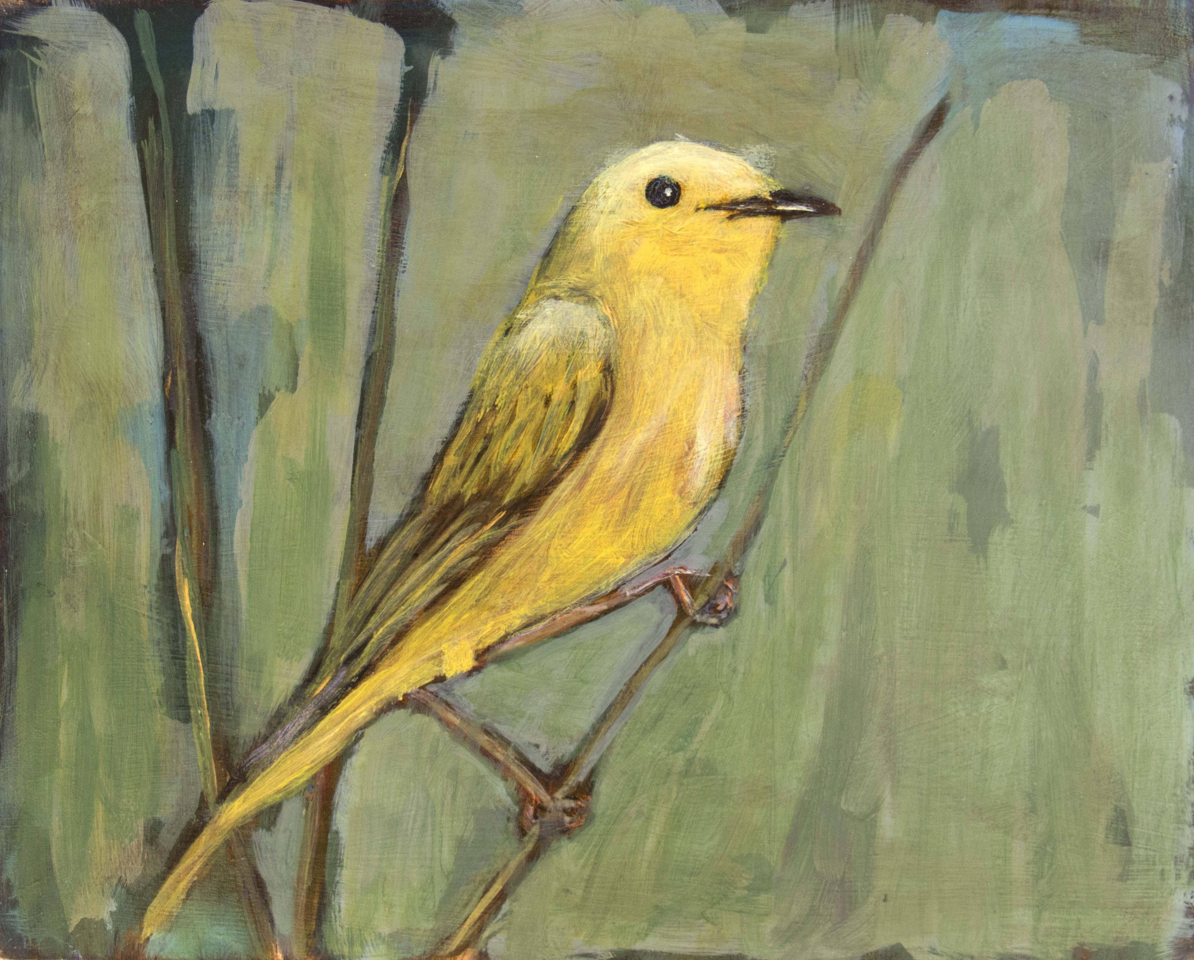 Bird#53
