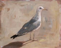 StandingBird#3