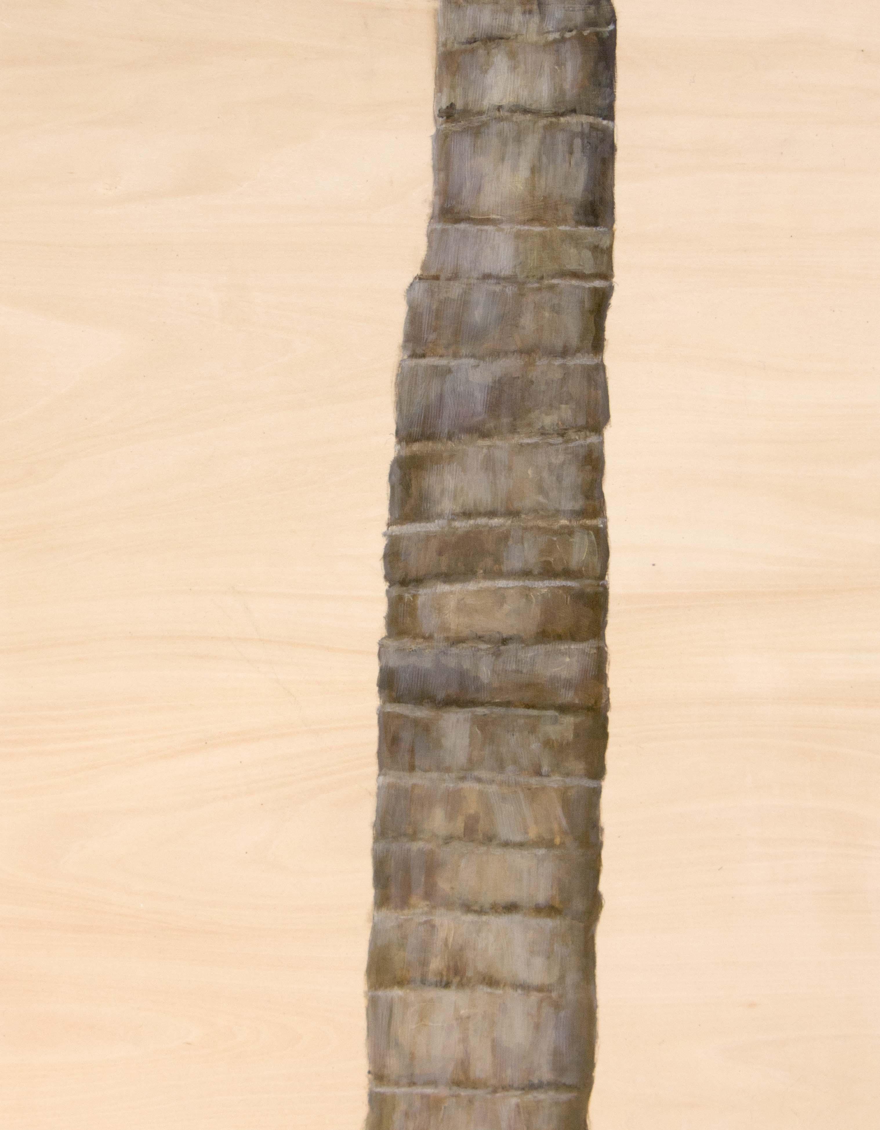 TreeStudy#3