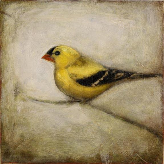 16.WebBird.jpg