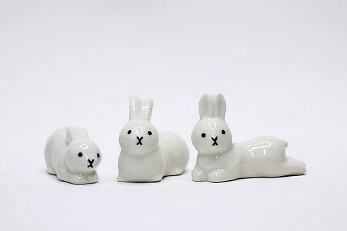 乖巧兔子筷子座
