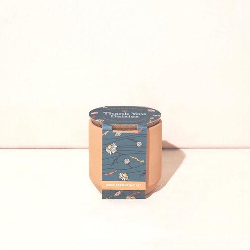 Tiny Terracotta - Thank You Daisies
